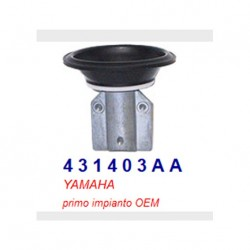 Diaphragm Carburetor OE OEM...