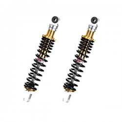 Shock absorber pair with...