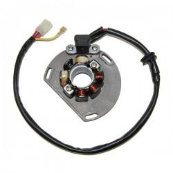 KTM stator coils 5
