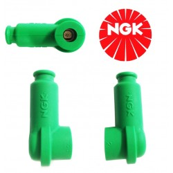 Green TRS1233C-G NGK Candle...