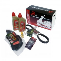 Complete revision kit HONDA...
