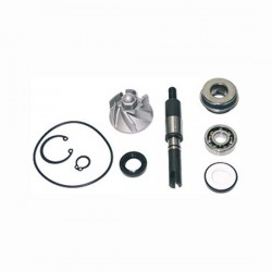 Honda 5506502 Water Pump...