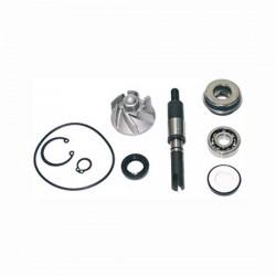 Kit review water pump Honda...