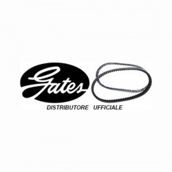 Drive belt Gates 68031902
